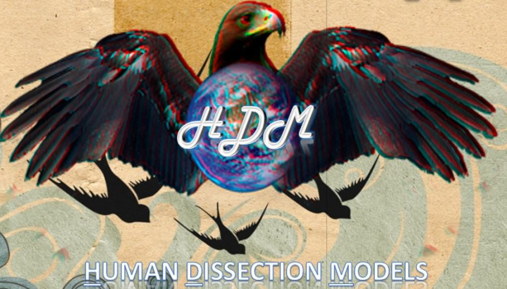 Human Dissection Models